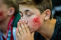 A welsh supporter reacts at  the UEFA EURO 2016 fan zone set up in the Principality Stadium, Cardiff, Wales, Britain, 6 July 2016, watching Portugal vs Wales EURO 2016 semi-final match. Athena Picture Agency/ALED LLYWELYN/ATHENA PICTURES