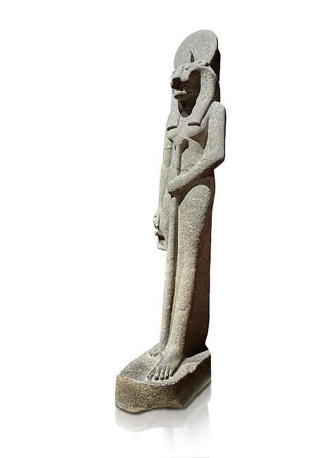 """Ancient Egyptian statue of goddess Sekhmet, grandodiorite, New Kingdom, 18th & 20thDynasty (1390-1150 BC), Thebes. Egyptian Museum, Turin. white background.<br /> <br /> This statue is unfinished and is in the stage before polishing. Sekhmet, """"the Powerful One"""" was a fearsome goddess symbolised by her lioness head. Daughter of the sun she personifies the disk of the world during the day. Sekhmet is the angry manifestation of Hathor inflicting the scourges of summer heat, famine and illness which is why the goddess needed to be exorcised every day. Drovetti Collection. C 264"""