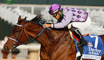 "Octover 02, 2020 : #7 Simply Ravishing and jockey Luis Saez win the 69th running of The Darley Alcibiades (Grade 1) ""Win and You're In Breeders' Cup Juvenile Fillies Division"" $350,000 for owner Harold Lerner, Madgalena Racing and Nehoc Stables and trainer Kenneth McPeek at Keeneland Racecourse in Lexington, KY on October 02, 2020.  Candice Chavez/ESW/CSM"