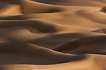 Sand dunes in the Thar Desert, Rajasthan, India