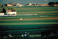 Several Amish farmers work their fields in a countryside landscape. Amish. Lancaster Pennsylvania United States farms.