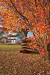 Lincoln Log Cabin State Historic Site, Coles County, IL<br /> Sargent Farm house- an Historic 1845 farm scene with a split rail fence framed by fall colored shrub -  a living history farm
