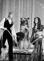 "Actress Deborah Raffin onstage with the incredible balancing dog at the ""Circus of the Stars,"" (CBS Special), Santa Monica Civic Auditorium, November, 1976. Photo by John G. Zimmerman"