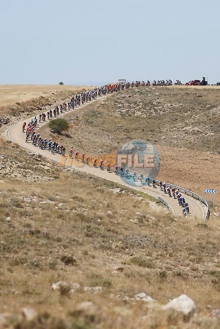 The peloton strung out during Stage 4 of La Vuelta d'Espana 2021, running 163.9km from Burgo de Osma to Molina de Aragon, Spain. 17th August 2021.    <br /> Picture: Luis Angel Gomez/Photogomezsport   Cyclefile<br /> <br /> All photos usage must carry mandatory copyright credit (© Cyclefile   Luis Angel Gomez/Photogomezsport)