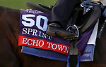 November 1, 2020: Echo Town, trained by trainer Steven M. Asmussen, exercises in preparation for the Breeders' Cup Sprint at Keeneland Racetrack in Lexington, Kentucky on November 1, 2020. Carolyn Simancik/Eclipse Sportswire/Breeders Cup