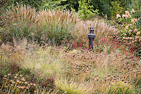 Meadow garden in autumn with grasses Miscanthus, Sporobolus and Allium seedheads at Northwind Perennial farm, Wisconsin