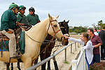 February 21, 2015: A young fan interacts with Escort Horse Pancake during the Mineshaft Handicap at the New Orleans Fairgrounds Risen Star Stakes Day. Steve Dalmado/ESW/CSM