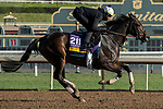 ARCADIA, CA  OCTOBER 30: Breeders' Cup Distaff entrant Wow Cat, trained by Chad C. Brown, exercises in preparation for the Breeders' Cup World Championships at Santa Anita Park in Arcadia, California on October 30, 2019.  (Photo by Casey Phillips/Eclipse Sportswire/CSM)