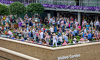 London, England, 4 th. July, 2018, Tennis,  Wimbledon, Walled Garden<br /> Photo: Henk Koster/tennisimages.com