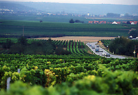 Vigneti lungo la Strada del Vino.Wineyards along the Wine Route.