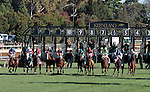 LEXINGTON, KY - OCTOBER 08: The Start of the First Lady.<br /> #10 Photo Call (IRE) and jockey Kent Desormeaux win the 19th running of The First Lady (Grade 1) $400,000 for owner Teresa Viola Racing Stables and trainer Todd Pletcher at Keeneland Race Course in Lexington, KY.  October 8, 2016, Lexington, Kentucky. (Photo by Candice Chavez/Eclipse Sportswire/Getty Images)