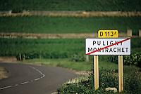 Europe/France/Bourgogne/21/Côte d'Or/Puligny Montrachet: Panneau de sortie du village - Route des Grands Crus