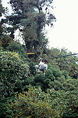 Monte Verde, Costa Rica. Tourists crossing a zip wire above the rainforest at the Sky Trek ecotourism attraction.
