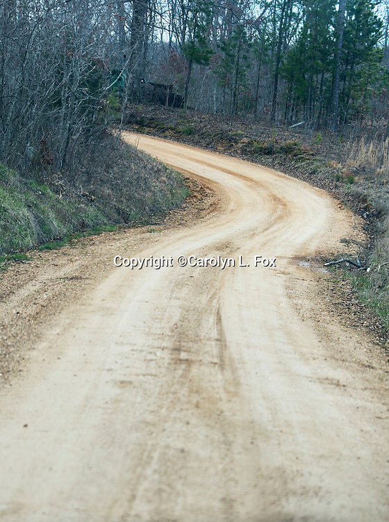 A dirt road leads into the woods.