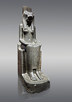 "Ancient Egyptian statue of goddess Sekhmet, grandodiorite, New Kingdom, 18th & 20thDynasty (1390-1150 BC), Thebes. Egyptian Museum, Turin. Grey Background.<br /> <br /> Sekhmet, ""the Powerful One"" was a fearsome goddess symbolised by her lioness head. Daughter of the sun she personifies the disk of the world during the day. Sekhmet is the angry manifestation of Hathor inflicting the scourges of summer heat, famine and illness which is why the goddess needed to be exorcised every day. Drovetti Collection. C 249"