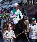 June 7, 2014: Close Hatches with Joel Rosario win the 46th running of the Grade I Ogden Phipps for 4-year old & up, for fillies & mares, going 1 1/16 mile at Belmont Park. Trainer: William Mott. Owner:  Juddmont Farms. Sue Kawczynski/ESW/CSM