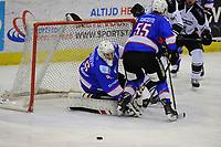 IJSHOCKEY: HEERENVEEN: IJsstadion Thialf, 06-01-2018, UNIS Flyers - Amsterdam Tigers, uitslag 9-1, ©foto Martin de Jong