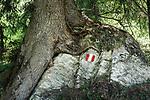 Oesterreich, Salzburger Land, Pinzgau, Raurisertal: Wanderwegmarkierung im Raurisertal | Austria, Salzburger Land, region Pinzgau, Rauris Valley: hiking trail marker at Rauris Valley