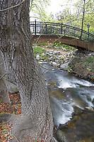 Bridge over creek in Lithia Park,Ashland, Oregon