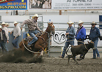 26 Aug 2010:  Shane Hanchey scored a time of 8.5 in the slack Tie Down Roping competition at the Kitsap County Stampede Wrangle Million Dollar PRCA Silver Rodeo Tour Bremerton, Washington.