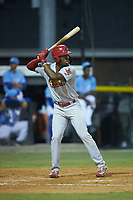 Todd Lott (29) of the Johnson City Cardinals at bat against the Burlington Royals at Burlington Athletic Stadium on September 3, 2019 in Burlington, North Carolina. The Cardinals defeated the Royals 7-2 to even Appalachian League Championship series at one game a piece. (Brian Westerholt/Four Seam Images)