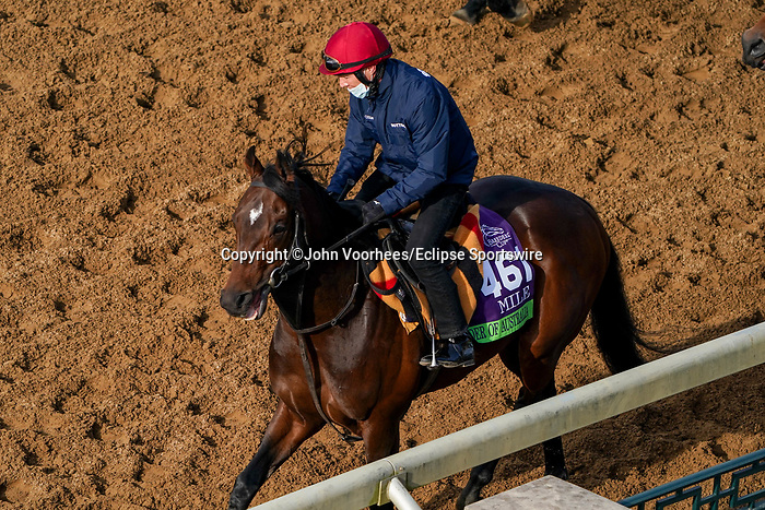 November 5, 2020: Order Of Australia, trained by trainer Aidan P. O'Brien, exercises in preparation for the Breeders' Cup Mile at Keeneland Racetrack in Lexington, Kentucky on November 5, 2020. John Voorhees/Eclipse Sportswire/Breeders Cup/CSM