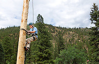 Photo story of Philmont Scout Ranch in Cimarron, New Mexico, taken during a Boy Scout Troop backpack trip in the summer of 2013. Photo is part of a comprehensive picture package which shows in-depth photography of a BSA Ventures crew on a trek. In this photo BSA Ventures crew member gets some height after climbing at the spar-pole climbing at Pueblano  at Philmont Scout Ranch.   <br /> <br /> The  Photo by travel photograph: PatrickschneiderPhoto.com