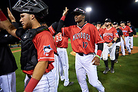 Batavia Muckdogs Dalvy Rosario (17) high fives teammates after a NY-Penn League game against the Lowell Spinners on July 11, 2019 at Dwyer Stadium in Batavia, New York.  Batavia defeated Lowell 5-2.  (Mike Janes/Four Seam Images)