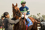 ARCADIA, CA  DECEMBER 26:  #3 Giant Expectations ridden by Gary Stevens, in the winners cirlce after winning the San Antonio Stakes (Grade ll) on December 26, 2017 at Santa Anita Park in Arcadia, CA. (Photo by Casey Phillips/ Eclipse Sportswire/ Getty Images)