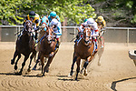 May 15, 2021 : Mighty Mischief, #2, ridden by Ricardo Santana Jr. wins the Chick Lang Stakes on Preakness Stakes Day at Pimlico Race Track in Baltimore, Maryland on May 15, 2021. Wendy Wooley/Eclipse Sportswire/CSM