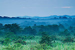 Savanna and tropical rainforest, Kibale National Park, western Uganda