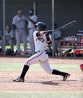 Anyesber Sivira - San Francisco Giants 2019 spring training (Bill Mitchell)