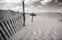 Dune fence on beach<br />