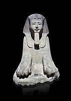 Ancient Egyptian Sphinx statue, sandstone, New Kingdom, early 19th Dynasty (1292-1250), Karnak, Temple of Amon. Egyptian Museum, Turin. black background<br /> <br /> This sphinx statue show signs of remodelling. the accentuated curves of the eyebrows, the almond shaped eyes and the wide mouth with fleshy lips are still influenced by the late 18th Dynasty style. The long aquiline nose however is typical of Ramesside. The lappets of the nemes headdress and the beard show clear traces of unfinished re-carving. Drovetti Collection. C1409