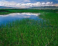 Cloud formations over Knox Ponds; Malheur National Wildlife Refuge, OR