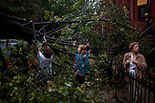 New York, New York<br /> September 16, 2010<br /> <br /> Park Slope after a severe storm and possible tornado. 5th Street and 6th Avenue completely blocked by downed trees.