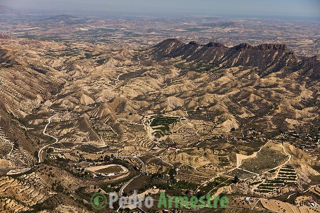 PARQUE REGIONAL DE CARRASCOY Y EL VALLE-EL PUNTARRON. MURCIA. 2008-04-04. (C) Pedro ARMESTRE