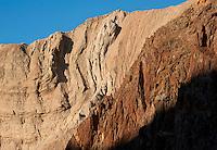 Strata in Anza Borrego Desert.