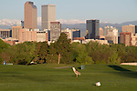 Downtown skyline from City Park, Denver, Colorado, USA. .  John leads private, wildlife photo tours throughout Colorado. Year-round. .  John offers private photo tours in Denver, Boulder and throughout Colorado. Year-round Colorado photo tours.