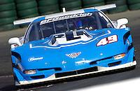 #49  PLP Chevrolet Corvette