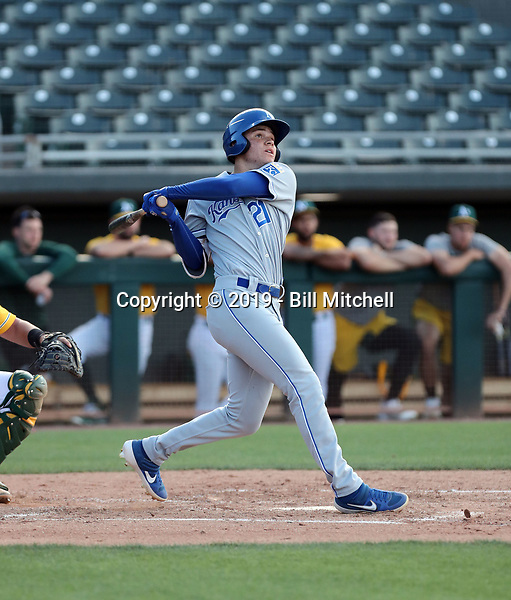 Darryl Collins - 2019 AZL Royals (Bill Mitchell)