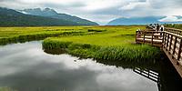 Potter's Marsh, BIrd habitat overlook, Alaska