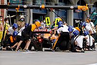 8th October 2021; Formula 1 Turkish Grand Prix 2021 free practise at the Istanbul Park Circuit, Istanbul;  Lando Norris GBR, McLaren F1 Team
