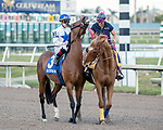 HALLANDALE BEACH, FL - JAN 13:Heart to Heart #3 with Irad Ortiz Jr. in the irons prepares to run the $200,000 Fort Lauderdale Stakes for trainer Brian A. Lynch at Gulfstream Park on January 13, 2018 in Hallandale Beach, Florida. (Photo by Bob Aaron/Eclipse Sportswire/Getty Images)