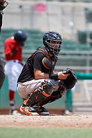 GCL Orioles catcher Jose Montanez (31) looks into the dugout in front of home plate umpire Joe McCarthy during a game against the GCL Red Sox on August 9, 2018 at JetBlue Park in Fort Myers, Florida.  GCL Red Sox defeated GCL Orioles 10-4.  (Mike Janes/Four Seam Images)