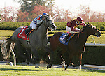 16 October 2010.  #3 Clarinet and John Velazquez outduel #1 Now and Forever and Donnie K. Von Hermel to win the 7th race.