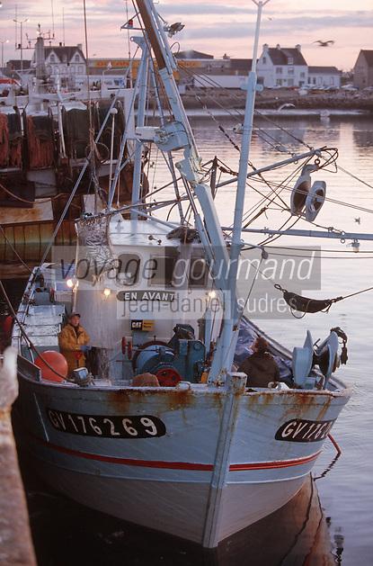 Europe/France/Bretagne/29/Finistere/St Guénolé: Retour des sardiniers au port à l'aube - déchargement des bateaux avec la salabarde
