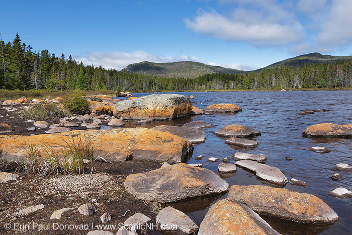 Shoal Pond in the Pemigewasset Wilderness in Lincoln, New Hampshire on a summer day. This remote pond is located along the Shoal Pond Trail in the 45,000-acre Pemigewasset Wilderness in the White Mountain National Forest.