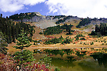 Tipsoo Lakes, easily accessible from U.S. Highway 410 through Mount Rainier National Park adorn the summit of Chinook Pass,  Early fall color from dried Beargrass, Blueberries, and Mountain Ash brighten stormy fall skies.