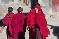 Nuns in Sakya, Tibet